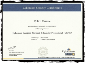 NETWORK E SECURITY PROFESSIONAL-p1